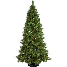 Pre Lit Pencil Cashmere Christmas Tree by Pre Lit 7 5 U0027 Sheridan Cashmere Pine Artificial Christmas Tree 400
