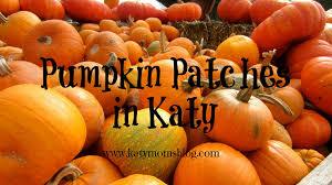 Morton Pumpkin Festival Hours by Pumpkin Patches In Katy Katy Moms Blog