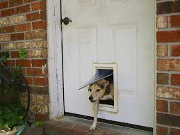 Best Pet Doors For Patio Doors by Dog Flaps In Patio Doors