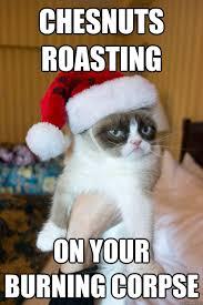 Roast Beef Curtain Meme by Cat Roast Meme Roast Free Download Funny Cute Memes