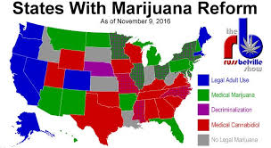 states pot is which states will legalize marijuana next