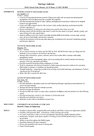 Download Account Manager Sales Resume Sample As Image File