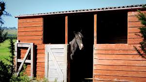 Loafing Shed Plans Portable by Designing Run In Sheds For Horses
