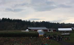 Pumpkin Patch Near Vancouver Washington by Celebrating Five Years At The Corn And Pumpkin Farm U2014 The Brown