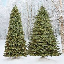 Flocked Downswept Christmas Trees by Holiday Splendor The Christmas Tree Buying Guide Home Style