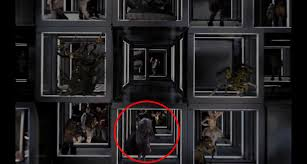 Image Witchincube The Cabin in the Woods Wiki