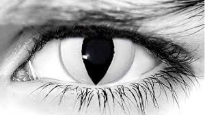 cat contacts wickedeyez white cat contacts white cat prescription theatrical lens
