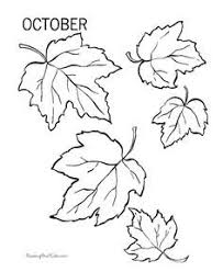 Drawn maple leaf fall leaves 7