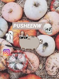 Porcupine Eating Pumpkin Gif by Pusheen V ミ ミ U2014 Pusheen Eating Ovbiously Donuts She