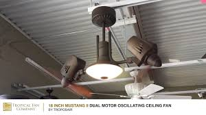 Dual Motor Ceiling Fan With Light by Mustang Ii Dual Motor Oscillating Ceiling Fan By Troposair Youtube