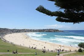 100 Bondi Beach Houses For Sale Sydney City Harbor Combo Tour Sydney Australia
