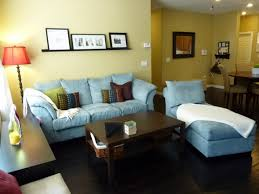 Apartment Living Room Decorating Ideas On A Budget Custom With Image Of Decoration New Design