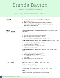 Best Resume Examples Skills Professional Example Of For