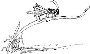 Grasshopper Black And White PNG Image Pictures - PicPng Spoke Fieldtrip Grasshopper Review 2017 A Great Choice Of Business Phone Number Line2 Demo Youtube Cheapest Service You Can Take With Anywhere Run Your On A Cell Small Systems Mightycall Vs Comparison Best Reviews Vs Vonage Which Is Better For Why Is The Alternative To By Voip Experts Users Nw England Giant Grasshoppers Tropidacris Collaris Reptile Forums The Biggest Benefits Of Having Vintage Wiring Diagrams Whirlpool Insect Pest Hopper Png Image Pictures Picpng