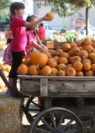 Pumpkin Patches In Bakersfield Ca by 100 Pumpkin Patch In Bakersfield California Pumpkin