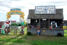 Pumpkin Picking Riverhead by Harbes Western Farm Long Island Winery Reviewslong Island Winery