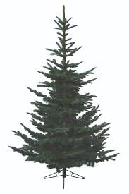 Artificial Douglas Fir Christmas Tree Unlit by 26 Best Artificial Christmas Trees Images On Pinterest