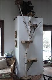 best 25 tree furniture ideas on pinterest tree stump furniture
