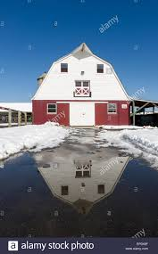 Front Of Red And White Barn Against A Bright Blue Sky In College ... Gambrel Roof Barn Connecticut Barns Mills Farms Panoramio Photo Of Red White House As It Should Be Nice Shed Clipart Red Clip Art Fniture Decorating Ideas Barn With Grey Roof Stock Image 524303 White Cadian Ii Georgia Okeeffe 64310 Work Art Farmhouse With Galvanized Lights From Barnlightelectric Home Design And Doors Architects Tree Services Oil Paints Majic Ana Classic Bunk Bed Diy Projects St Croix County Wi Wonderful Clipart Black Free Images Clip Library