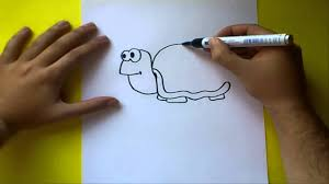 Como Dibujar Una Tortuga Paso A Paso How To Draw A Tortoise YouTube