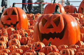 Jim Halpert Halloween Facebook by The Office U0027 Halloween Costumes Straight Outta Dunder Mifflin