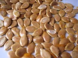 cuisiner le potimarron en l馮ume bio et nature mes recettes récupérez vos graines de courges bio