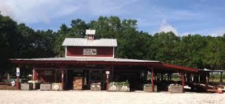 Sarasota Pumpkin Festival 2017 hunsader farms pumpkin festival florida food u0026 farm