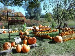 Pumpkin Patch Picking Lancaster Pa by Fall Harvest At Magicland Farms 2013 Youtube