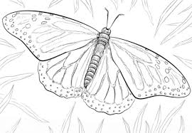 Click To See Printable Version Of Monarch Butterfly Coloring Page