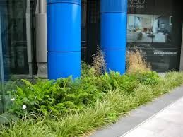 100 Neo Bank Side NEO Bankside New Build Fresh Planting Plants And Us