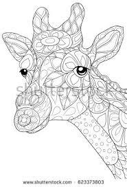 Adult Coloring Page Giraffe Zen Art Style Illustration