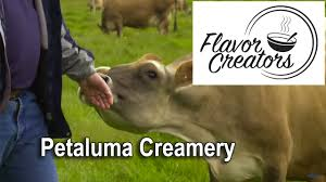 Pumpkin Patch Petaluma California by Flavor Creators Petaluma Creamery Youtube