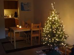 Aka Bailey Decorating The Apartment For Christmas