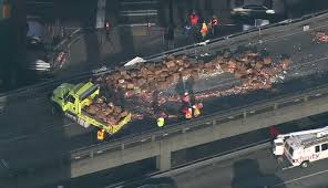 That Stinks: Semi Carrying Crab Overturns On Seattle Highway | WRGB Big Rig Video Game Theater Clowns Unlimited Gametruck Seattle Party Trucks What Does Video Game Software Knowledge Mean C U Funko Hq Tips For A Fun Family Activity In Everett Wa Whos That Selling Steaks Off Truck Its Amazon Boston Herald Xtreme Mobile Gamez 28 Photos 11 Reviews Truck Rental Cost Brand Whosale Mariners On Twitter Find The Tmobile Today Near So Many People Are Leaving Bay Area Uhaul Shortage Is Supersonics News And Updates Videos Kirotv Eastside 176 Event Planner Your House