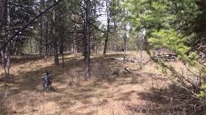elk shed hunting april 1st 2017 youtube