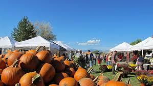 Pumpkin Patch Denver Botanic Gardens by Ten Pumpkin Patches And Festivals To Carve Into Your Colorado