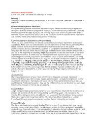 Resume Profile Summary Sample