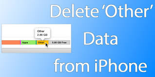 How to Delete Other Data from iPhone or iPad to Free Up Space