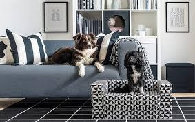 ratgeber hunde katzenzubehör ikea schweiz