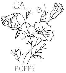 Drawn Poppy California State 2