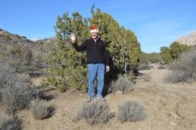 Christmas Tree Pass