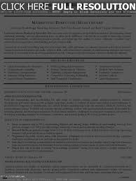 Event Coordinator Resume Sample Monster Com New Planning Examples