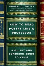 How To Read Poetry Like A Professor Quippy And Sonorous Guide Verse