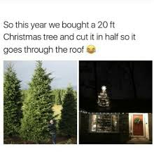 Memes Christmas Tree And Trees So This Year We Bought A 20 Ft