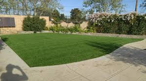 Buy Artificial Grass For Your Backyard Playful Dog Running Away From Ball White Labradoodle Putting Greens Golf Just Like Grass Tour Backyard Green Cost Synlawn Itallations Reviews Testimonials Our Diy Kids Theater Emily A Clark Unique Architecturenice Little Bit Funky How To Make A Backyard Putting Green Wood Fence On Colorful House Stock Vector 606411272 Concrete Ideas Hgtvs Decorating Design Blog Hgtv Puttinggreenscom One Story Siding With Lawn View From The