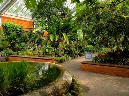The beautiful Matthaei Botanical Gardens Conservatory Ann Arbor MI