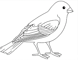 Sweet Ideas Pictures Of Birds To Color Bird Coloring Pages