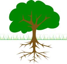 Family Tree Roots Clip Art