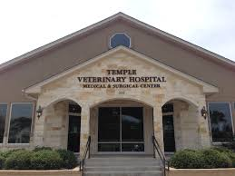 Temple Veterinary Hospital Medical And Surgical Center ... Veterinary Floor Plan All Valley Animal Care Center Animal Care Red Barn Hospital Vetenarian In Dahlonega Ga Usa Taking Of Sick Animals At Breyer Horses Stablemates Vet Teacher Arrested After Alleged Attack The Nugget Northeast Services Shelby County Missouri 37 Best Blue Frog Offices Images On Pinterest Cstruction Contact