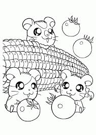 Hamsters Having Corn Coloring Page